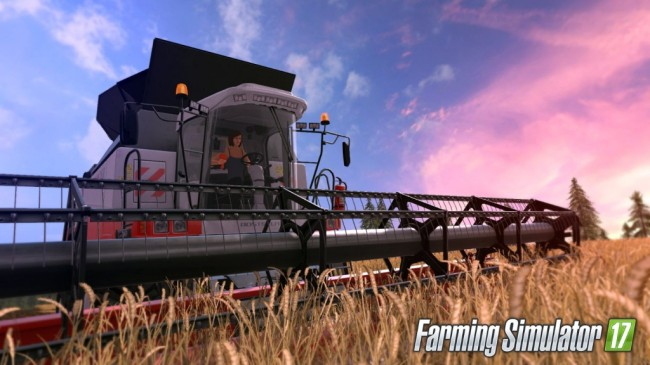 Farm Simulator 17 (5)