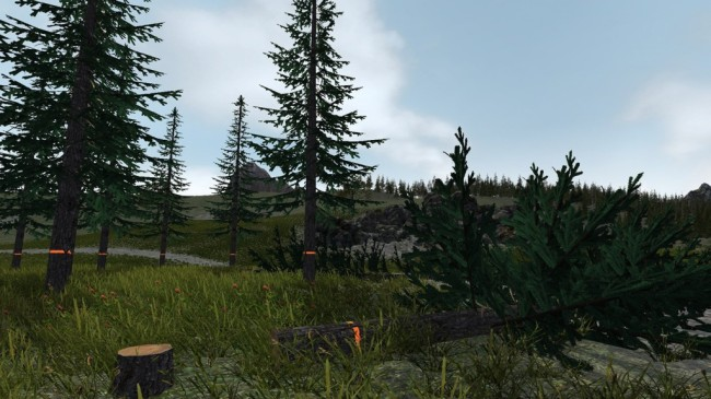 Forestry simulator 2017 (1)
