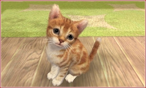 nintendogs and cats screen2