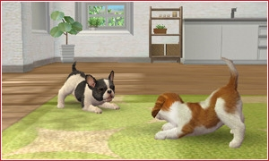 nintendogs and cats screen3